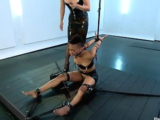 Lea Lexis  Nikki Darling In Exotic Intercourse Pot, Nikki, Perceives Electrosex For The 1st Time - Electrosluts